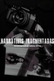 Fragmented Narratives