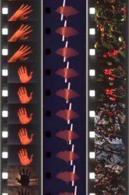 Twelve Seasonal Films