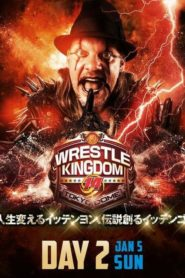 NJPW Wrestle Kingdom 14: Night 2