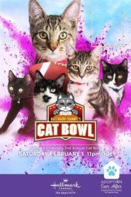 Hallmark Channel's 2nd Annual Cat Bowl