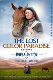 The Lost Color Paradise