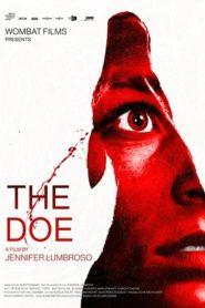 The Doe