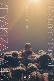 Our Lies and Truths: Documentary of Keyakizaka46