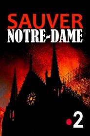 Sauver Notre-Dame – France TV