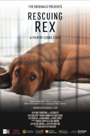 Rescuing Rex