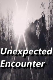 Unexpected Encounter